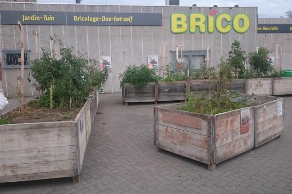 Ο λαχανόκηπος δίπλα στο σταθμό Thieffry