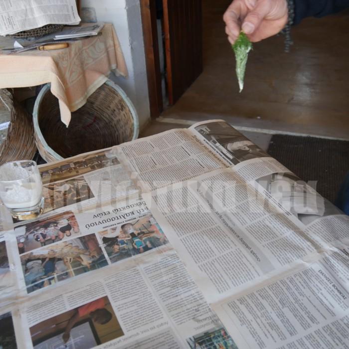 Η κα Παπαδημουλά, αφού έφτιαξε την αλευρόκολλα άρχισε να ενώνει τις εφημερίδες χρησιμοποιώντας αντί για πινέλο ένα μικρό ματσάκι με άνηθο.