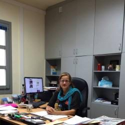 Η προϊσταμένη των Τεχνικών Υπηρεσιών της Περιφέρειας Ελένη Δοξάκη εξηγεί πως η παρέμβαση δεν πρόλαβε να ολοκληρωθεί.