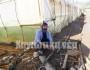 Ιδιοκτήτης θερμοκηπίου με μεγάλες καταστροφές ο κ. Μαργιολάκης.