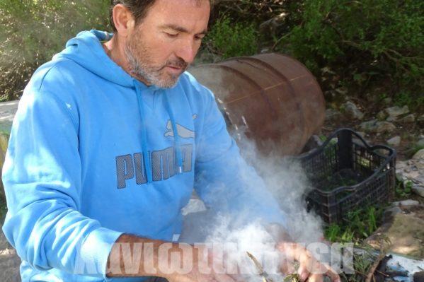 Επί το έργον στην περιοχή του Ομαλού ο μελισσοκόμος Μιχάλης Μπλεμπλιδάκης.